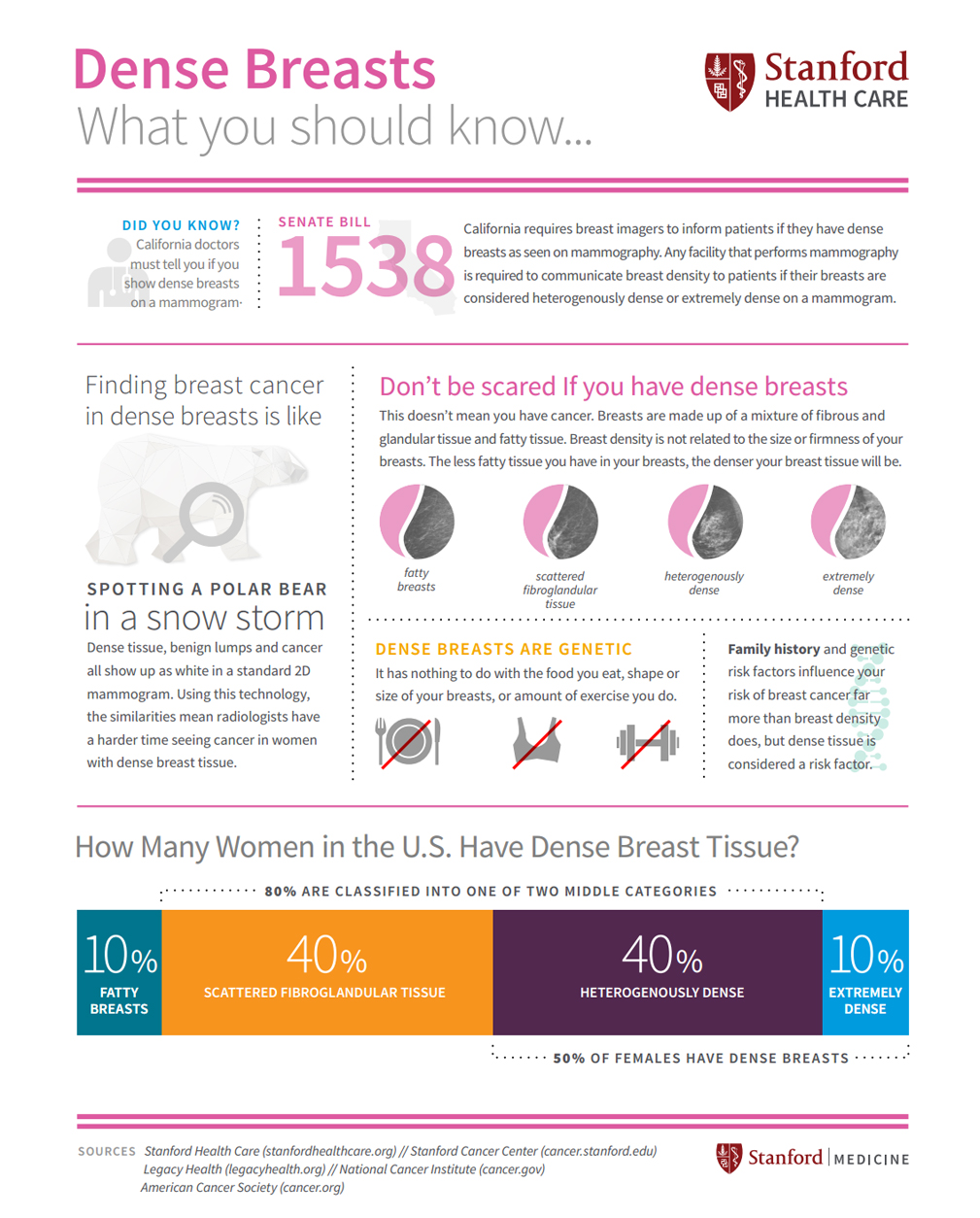 Breast cancer: Dense Breast Infographic