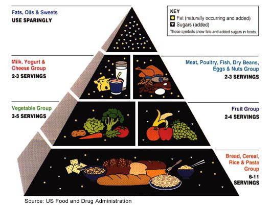 Food Guide Pyramid And Serving Sizes Stanford Health Care